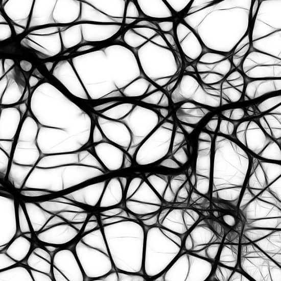 Teràpia neural